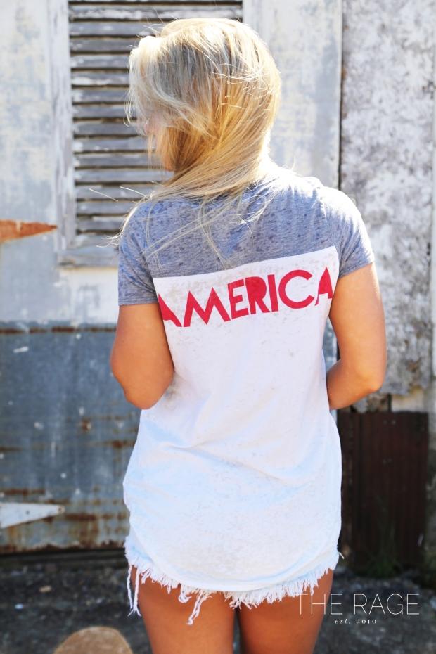 America BLOG4
